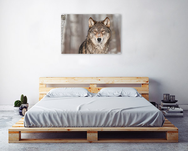 Wolf Profile Picture Wall