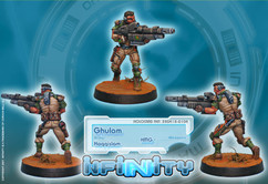 Infinity: Haqqislam Ghulam Infantry (HMG)