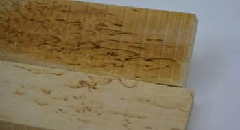 Curly Birch Super Grade, Scales x 2