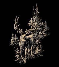 mule-deer-scene.jpg