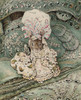 Art Prints of Lady Mouse in a Mob Cap by Beatrix Potter
