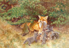 Art Prints of Fox with Cubs by Bruno Liljefors