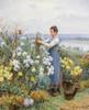 Art Prints of Chrysanthemums by Daniel Ridgway Knight