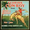068 Florida Cowboy Oranges and Grapefruit, Fruit Crate Labels   Fine Art Print