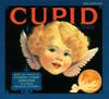 08o Cupid Valencias, Fruit Crate Labels | Fine Art Print