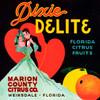 097 Dixie Delite Florida Citrus Fruit, Fruit Crate Labels | Fine Art Print