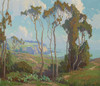 Art Prints of Eucalyptus in Laguna Beach by Marion Kavanaugh Wachtel