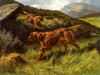 Art Prints of Lords of the Glen, Irish Setters by Thomas Blinks