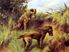 Art Prints of Irish Terriers by Thomas Blinks