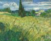 Art Prints of Green Field by Vincent Van Gogh