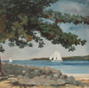 Art Prints of Nassau, Water and Sailboat by Winslow Homer