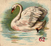 Art Prints of Game Piece, Swan, Vintage Game Pieces & Playing Cards