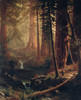 Art Prints of Giant Redwood Trees of California by Albert Bierstadt