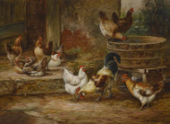 Art Prints of Barnyard Fowl by Arthur Fitzwilliam Tait