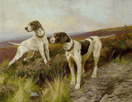 Art Prints of Pointers on a Moor by Arthur Wardle