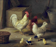 Art Prints of Chickens and Chicks in a Barn by Edgar Hunt