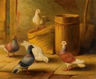 Art Prints of Pigeons II by Edgar Hunt
