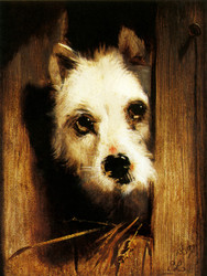 Art Prints of A Dog Looking Out of a Kennel by Edwin Henry Landseer