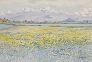 Art Prints of A Field of Wildflowers by Gunnar Widforss