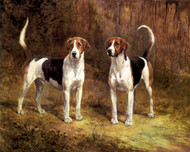 Art Prints of Two Foxhounds, No. 2 by Heywood Hardy