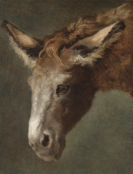 Art Prints of Study for the Head of a Donkey by Jacques-Laurent Agasse