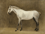 Art Prints of A Grey Horse by Camille Corot
