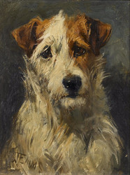 Art Prints of Fox Terrier by John Emms