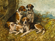 Art Prints of Hounds at Rest by John Emms