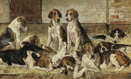 Art Prints of Hounds at Rest II by John Emms