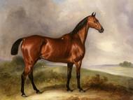 Art Prints of Bulldog, a Grey Hunter in a Landscape by John Ferneley