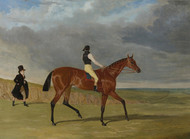 Art Prints of Bay Filly Matilda by John Frederick Herring
