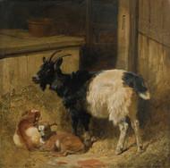 Art Prints of Goats in a Barn by John Frederick Herring