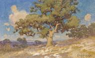 Art Prints of High Desert Oaks by Julian Onderdonk