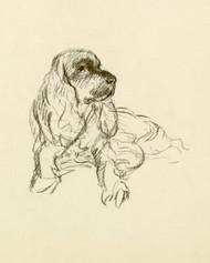 Art Prints of Susan 2 by Lucy Dawson