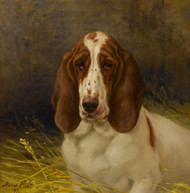 Art Prints of A Basset Hound by Maud Earl