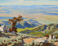Art Prints of Northwest from Pine Forest Range by Maynard Dixon