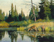 Art Prints of Deer in a Stream by Philip Goodwin