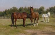 Art Prints of Three Horses in a Landscape by Rosa Bonheur