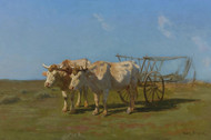 Art Prints of Two White Oxen Pulling a Cart by Rosa Bonheur