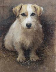Art Prints of Portrait of a Terrier by Samuel Fulton