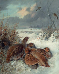 Art Prints of Partridge in a Snowy Landscape by William Woodhouse