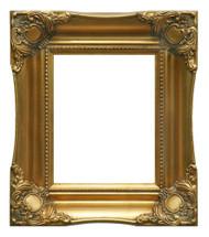 Museum Quality Elegant Gold Frame