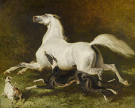 Art Prints of Horse, Greyhound and Terrier by Alfred de Dreux