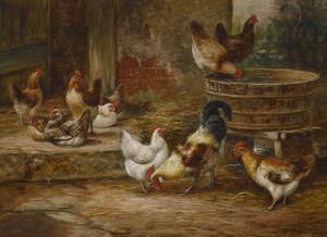 Art Prints of Barnyard Fowl by Arthur Fitzwilliam Tait