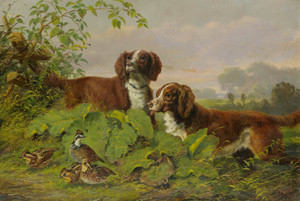 Art Prints of Two Setters and Quail by Arthur Fitzwilliam Tait