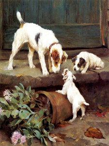 A Wire Hair Fox Terrier with Puppies by Arthur Wardle | Fine Art Print