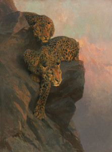 Art Prints of Leopards on the Lookout by Arthur Wardle