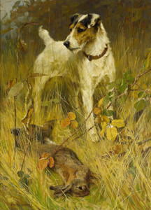 Art Prints of Run to Ground by Arthur Wardle