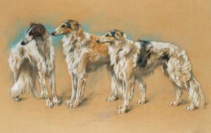 Art Prints of Three Borzoi by Arthur Wardle