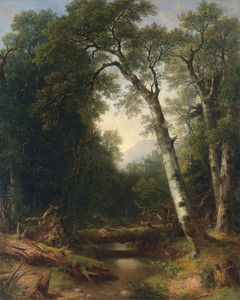 A Creek in the Woods by Asher Brown Durand | Fine Art Print